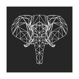 Elephant Polygon Láminas por Lisa Kroll