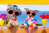 Cocktail Dogs Reproduction photographique par Javier Brosch