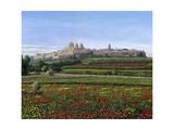 Mdina Poppies Malta 1 Print by Richard Harpum