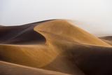 Sunset Caressing the Crests of Red Sand Dune Waves and Howling Wind in the Desert Lámina fotográfica por Edwards, Jason