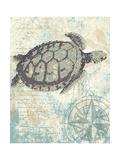 Sea Turtles I Reproduction giclée Premium par Piper Ballantyne