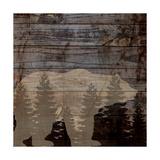 Rustic Bear Prints by Piper Ballantyne