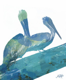 Watercolor Pelican II Poster par Julie DeRice