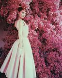 Audrey Hepburn Foto