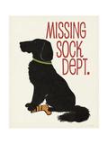 Missing Sock Dept Giclée-Premiumdruck von Jo Moulton