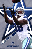Dallas Cowboys - D Bryant 2015 Fotografia