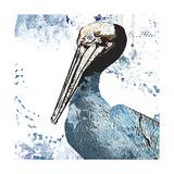 Blue Pelican Poster par Sarah Ogren