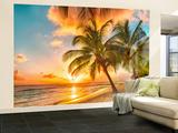Barbados Palm Beach Tapetmaleri