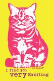 Very Exciting Giclée-Premiumdruck von  Cat is Good