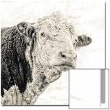 Close Up of Bull's Head Kunst von Mark Gemmell