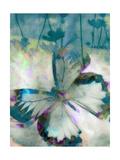 In Flight Prints by Ricki Mountain