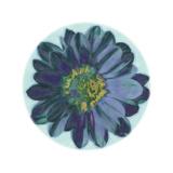 Flora Orb IV Prints by Ricki Mountain