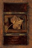Dried Leaf Fotografisk trykk av Den Reader