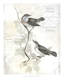 Rustic Gould IV Print by  Studio W
