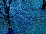 Autumn Tree in Blue, Green, and Purple Metal Print by Robert Cattan