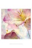 Pink Hyacinth V Posters by Honey Malek