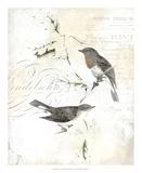 Rustic Gould III Prints by  Studio W