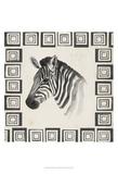 Safari Zebra II Posters by Grace Popp