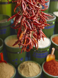 Chillies in Spice Market, Istanbul, Turkey, Europe Metalldrucke von Sakis Papadopoulos