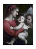 Madonna Della Tenda, C.1512 Reproduction procédé giclée par  Raphael