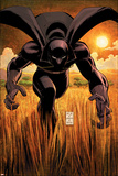 Black Panther No.1 Cover: Black Panther Affiches par John Romita Jr.