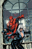 Marvel Knights Spider-Man No.4 Cover: Spider-Man and Black Cat Posters par Terry Dodson