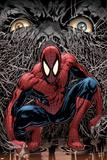 The Amazing Spider-Man No.553 Cover: Spider-Man Bilder av Phil Jimenez