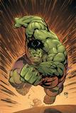 Marvel Adventures Hulk No.14 Cover: Hulk Fotografía por David Nakayama