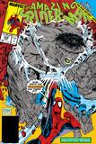 Amazing Spider-Man No.328 Cover: Hulk and Spider-Man Crouching Juliste tekijänä Todd McFarlane