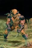 Wolverine Origins No.37 Cover: Wolverine Plakater af Doug Braithwaite
