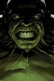 Avengers 16 Cover: Hulk Bilder av Leinil Francis Yu