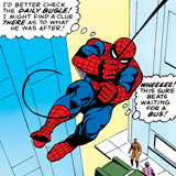 Marvel Comics Retro: The Amazing Spider-Man Comic Panel Poster