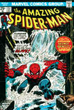 Marvel Comics Retro: The Amazing Spider-Man Comic Book Cover No.151, Flooding Poster