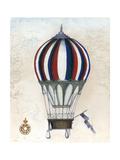 Vintage Hot Air Balloons VI Posters por Naomi McCavitt