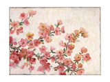 Cherry Blossom Composition II Premium Giclee Print by Tim