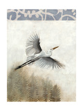 Waterbirds in Mist I Premium Giclee Print by Naomi McCavitt