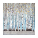 Into the Forest I Metal Print by Tim