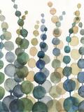 Pompom Botanical I Premium Giclee-trykk av Megan Meagher