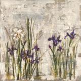 Peinture aux iris II Reproduction procédé giclée par  Carney