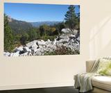 Sierra Nevada Mountains 1 Wall Mural by  NaxArt