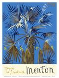 Menton - Tropen in Frankreich (Tropics in France) - Palm Tree