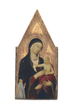 Madonna and Child with Donor, 1325-30 Giclée-tryk af Lippo Memmi