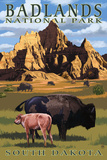 Badlands National Park, South Dakota - Bison Scene Muovikyltit tekijänä  Lantern Press