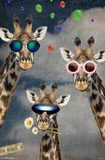 Giraffe Selfie Photo