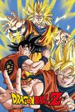 Dragonball Z- Goku Poster