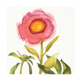 Summer Meadow Blossom Crop I Posters by Shirley Novak