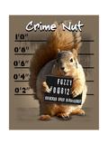 Squirrel Pósters por Jim Baldwin