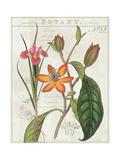 Vintage Flora III Ivory Print by Sue Schlabach