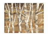 Wandering Through the Birches III Posters by Albena Hristova