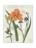 Vintage Flora II Ivory Prints by Sue Schlabach